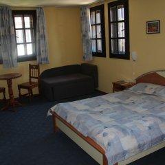 Отель Holiday Village Kedar Болгария, Долна баня - отзывы, цены и фото номеров - забронировать отель Holiday Village Kedar онлайн удобства в номере фото 2