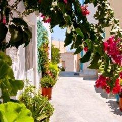 Отель Villa Stella Греция, Остров Санторини - отзывы, цены и фото номеров - забронировать отель Villa Stella онлайн фото 3