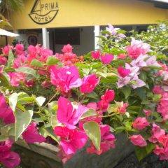 Отель A-Prima Hotel Шри-Ланка, Калутара - отзывы, цены и фото номеров - забронировать отель A-Prima Hotel онлайн фото 4