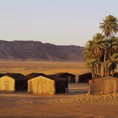 Отель Residence Rosas Марокко, Уарзазат - отзывы, цены и фото номеров - забронировать отель Residence Rosas онлайн фото 7