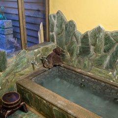 Отель Asobe Минамиогуни бассейн фото 2