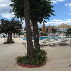 Sonnen Hotel Турция, Мармарис - отзывы, цены и фото номеров - забронировать отель Sonnen Hotel онлайн бассейн