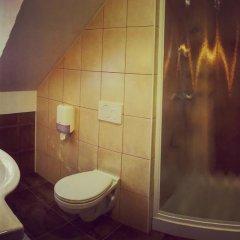 Отель Guesthouse Aleš 3* Стандартный номер с различными типами кроватей фото 8