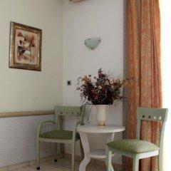 Hotel Platon 3* Стандартный номер с разными типами кроватей фото 4