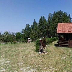 Отель Country Club Primi Faggi Санто-Стефано-ин-Аспромонте с домашними животными
