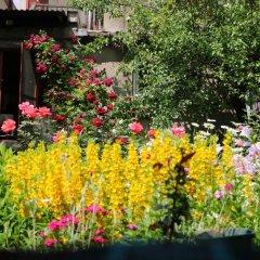 Отель Mira фото 13