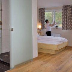Отель Gut Lilienfein 4* Стандартный номер с различными типами кроватей фото 3