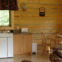 Отель Mica Mountain Lodge & Log Cabins в номере фото 2