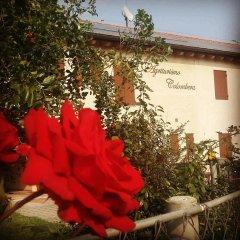 Отель Agriturismo-B&B Colombera фото 8