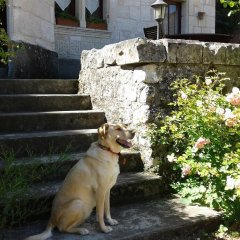 Отель Le Petit Hureau Сомюр с домашними животными