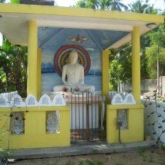 Отель Serene Residence Шри-Ланка, Калутара - отзывы, цены и фото номеров - забронировать отель Serene Residence онлайн фото 5