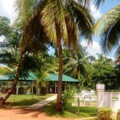 Отель Rajarata Lodge Шри-Ланка, Анурадхапура - отзывы, цены и фото номеров - забронировать отель Rajarata Lodge онлайн фото 7