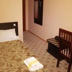 Гостиница Снежный барс Домбай 3* Стандартный номер с двуспальной кроватью фото 4