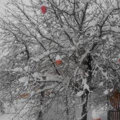 Гостевой дом Валентина Коттедж с различными типами кроватей фото 11