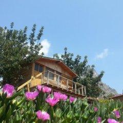 Отель Olive Garden Kabak Патара приотельная территория фото 2