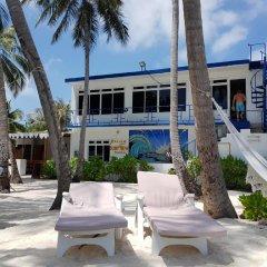 Отель Batuta Maldives Surf View Guest House Мальдивы, Северный атолл Мале - отзывы, цены и фото номеров - забронировать отель Batuta Maldives Surf View Guest House онлайн бассейн фото 3