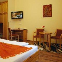 Hotel Manzard Panzio 3* Стандартный номер с различными типами кроватей фото 10