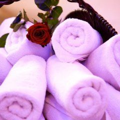Wellness & Spa Hotel Ambiente спа
