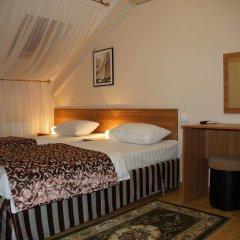 Мини-отель Ирис 2* Номер категории Эконом с различными типами кроватей фото 6