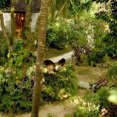 Отель Whistling Bird Resort фото 3