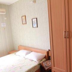 Гостиница Aist Стандартный номер с двуспальной кроватью фото 4
