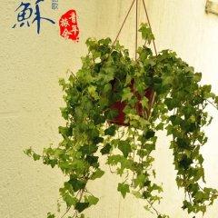 Отель Liusu Youth Hostel Китай, Сучжоу - отзывы, цены и фото номеров - забронировать отель Liusu Youth Hostel онлайн приотельная территория фото 2