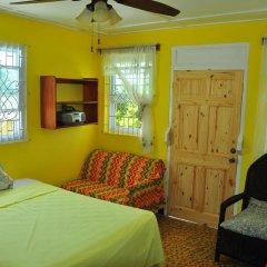 Отель Duncans Hideaway Guesthouse Стандартный номер с различными типами кроватей фото 2