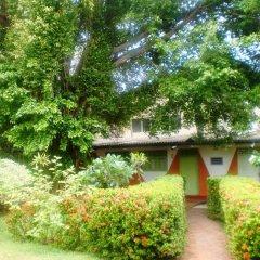 Отель Green Garden Guest House Шри-Ланка, Берувела - 1 отзыв об отеле, цены и фото номеров - забронировать отель Green Garden Guest House онлайн фото 5