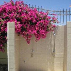 Отель Villa Shahrazad Hurghada фото 3
