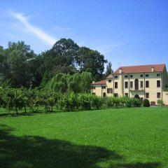 Отель Agriturismo Villa Selvatico Италия, Вигонца - отзывы, цены и фото номеров - забронировать отель Agriturismo Villa Selvatico онлайн фото 8