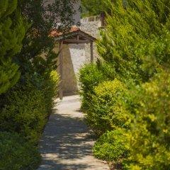 Villa Badem Турция, Патара - отзывы, цены и фото номеров - забронировать отель Villa Badem онлайн фото 3
