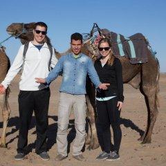 Отель Desert Camel Camp Марокко, Мерзуга - отзывы, цены и фото номеров - забронировать отель Desert Camel Camp онлайн приотельная территория фото 2