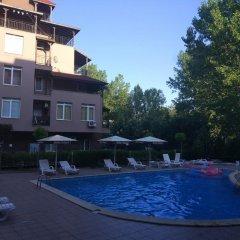Отель Studio Stella Polaris Болгария, Солнечный берег - отзывы, цены и фото номеров - забронировать отель Studio Stella Polaris онлайн бассейн фото 3