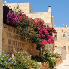 Отель Gozo Hills Bed and Breakfast Мальта, Шаара - отзывы, цены и фото номеров - забронировать отель Gozo Hills Bed and Breakfast онлайн фото 5