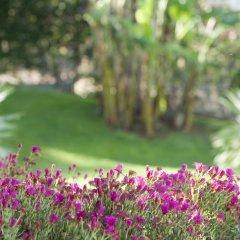 Отель Madeira Panoramico Hotel Португалия, Фуншал - отзывы, цены и фото номеров - забронировать отель Madeira Panoramico Hotel онлайн фото 3