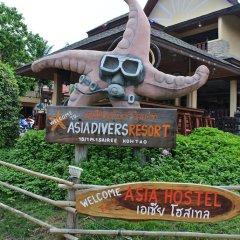 Отель Asia Hostel Таиланд, Остров Тау - отзывы, цены и фото номеров - забронировать отель Asia Hostel онлайн приотельная территория