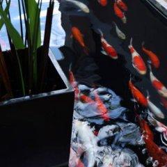 Отель Amari Vogue Krabi Таиланд, Краби - отзывы, цены и фото номеров - забронировать отель Amari Vogue Krabi онлайн парковка