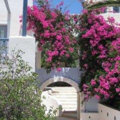 Отель Atlantis Beach Villa Греция, Остров Санторини - отзывы, цены и фото номеров - забронировать отель Atlantis Beach Villa онлайн фото 8