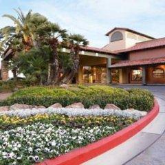 Отель Alexis Park All Suite Resort фото 11