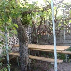 Abrikos Hostel фото 2