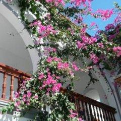 Отель Kafouros Hotel Греция, Остров Санторини - отзывы, цены и фото номеров - забронировать отель Kafouros Hotel онлайн фото 18