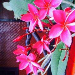 Отель Baan Mai Resort Таиланд, Краби - отзывы, цены и фото номеров - забронировать отель Baan Mai Resort онлайн фото 2