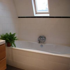 Отель B&B Dinteldroom Нидерланды, Амстердам - отзывы, цены и фото номеров - забронировать отель B&B Dinteldroom онлайн ванная