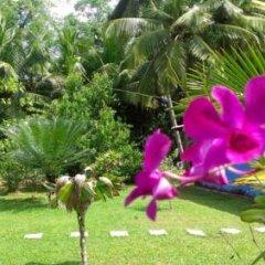 Отель Mangrove Villa Шри-Ланка, Бентота - отзывы, цены и фото номеров - забронировать отель Mangrove Villa онлайн фото 10
