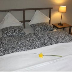Отель Apartman u Hradcan комната для гостей фото 3
