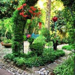 Отель La Casita del Patio Verde Мексика, Мехико - отзывы, цены и фото номеров - забронировать отель La Casita del Patio Verde онлайн детские мероприятия фото 2