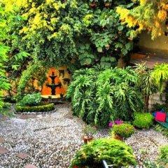 Отель La Casita del Patio Verde Мексика, Мехико - отзывы, цены и фото номеров - забронировать отель La Casita del Patio Verde онлайн фото 7