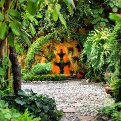 Отель La Casita del Patio Verde Мексика, Мехико - отзывы, цены и фото номеров - забронировать отель La Casita del Patio Verde онлайн фото 9