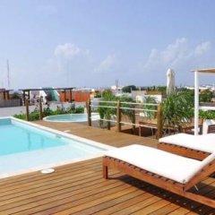 Отель La Papaya Plus 201 - LPP201 Мексика, Плая-дель-Кармен - отзывы, цены и фото номеров - забронировать отель La Papaya Plus 201 - LPP201 онлайн бассейн фото 2