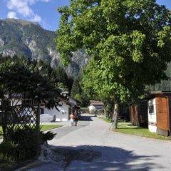 Отель Camping Parco Adamello Италия, Пинцоло - отзывы, цены и фото номеров - забронировать отель Camping Parco Adamello онлайн фото 5